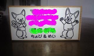 PAP_0204.jpg